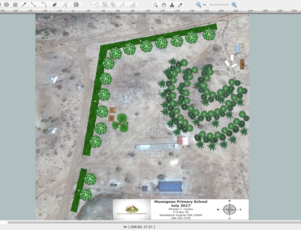 Muungano Primary School Permaculture/Agroforestry Design Project